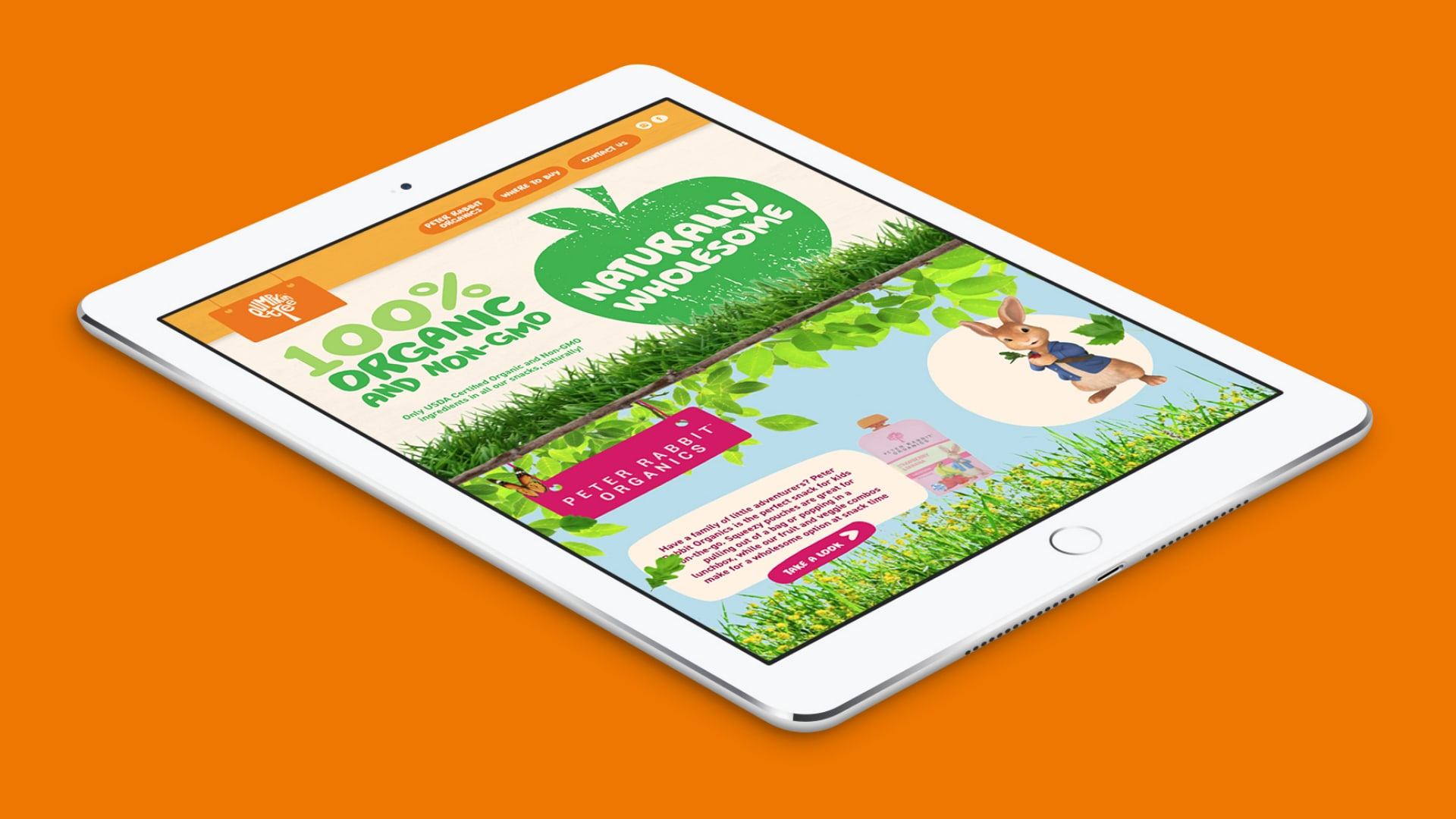 Homepage visual from Pumpkin Tree Snacks website on a white iPad